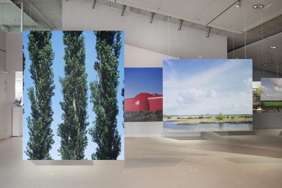 Freedomland_DenisGuzzo_Installation view_Amlere2013-8337